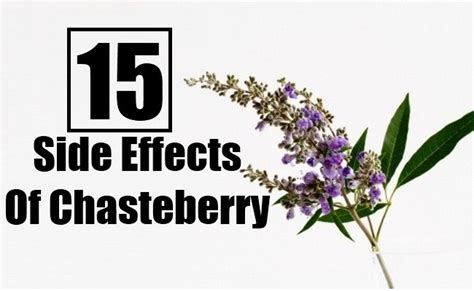 15 Serious Side Effects Of Chasteberry | DIY Health Remedy