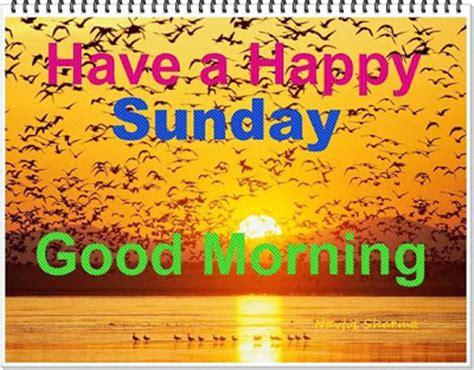 Best Collections of Happy Sunday SMS / Text Messages - SMSVil®