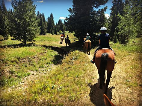 Yellowstone for all ages - Rad Family Travel