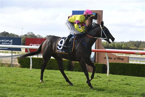 SHERRY TAKES THE LEAD | Wyong Race Club & Function Centre